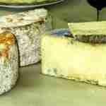queso Gamonedo