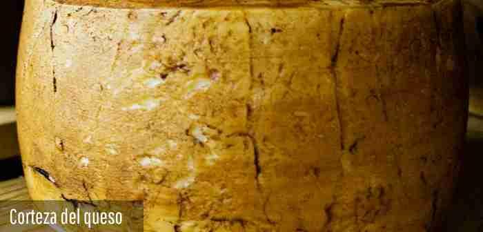 corteza-del-queso